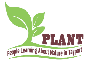 People Learning About Nature in Tayport (PLANT)
